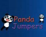 Panda Jumpers